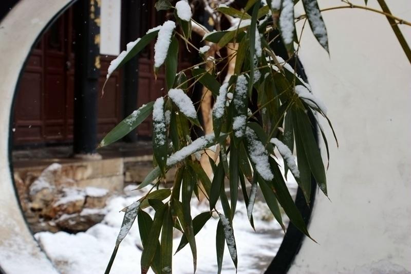 雪中十笏园062.jpg