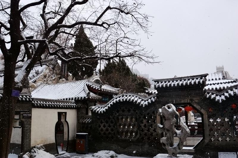 雪中十笏园073.jpg