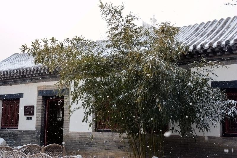 雪中十笏园078.jpg