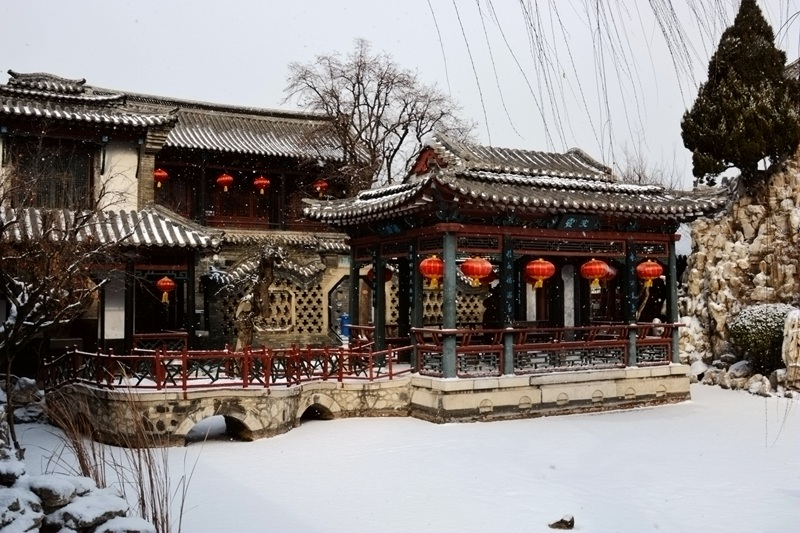 雪中十笏园081.jpg