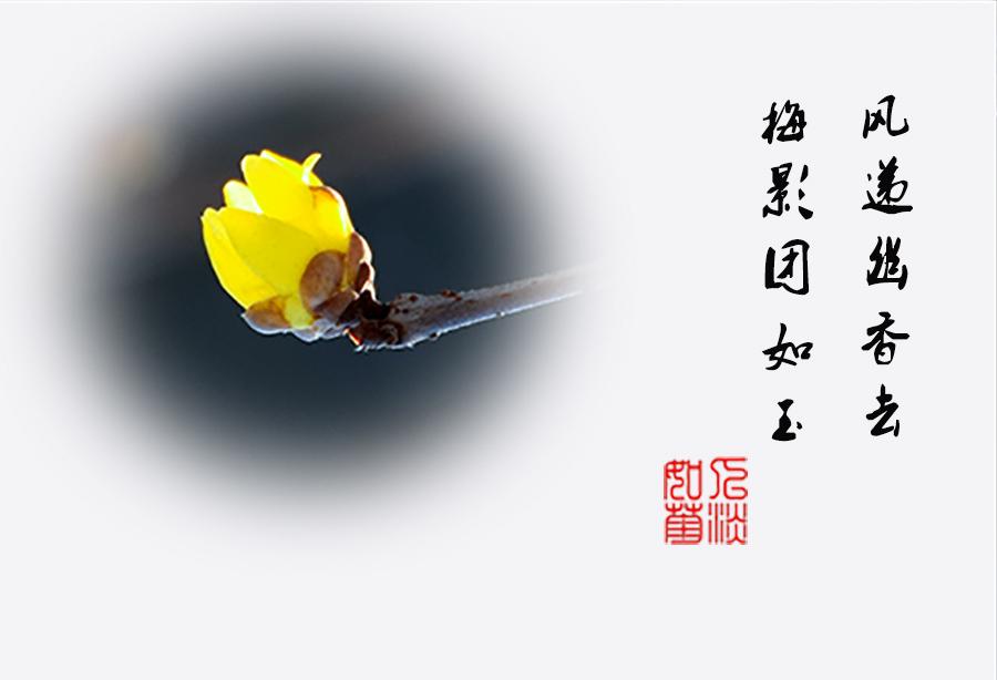 DSC_0226.jpg调1.jpg