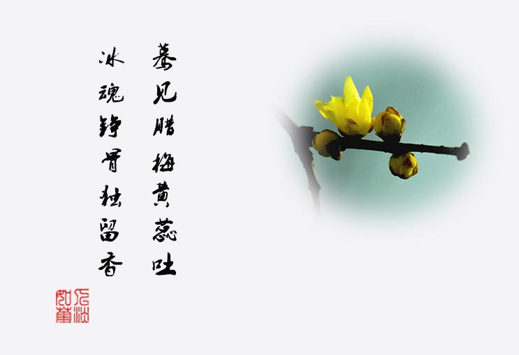 DSC_0228.jpg调2.jpg