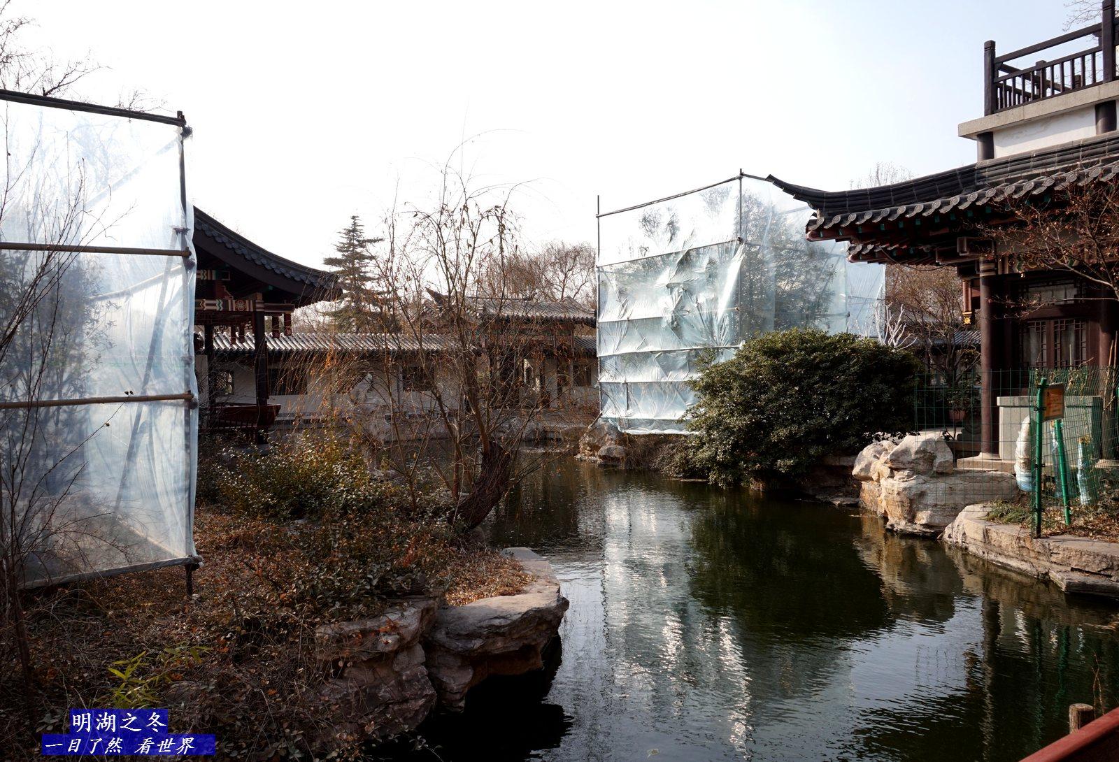 明湖之冬-11-1600.jpg