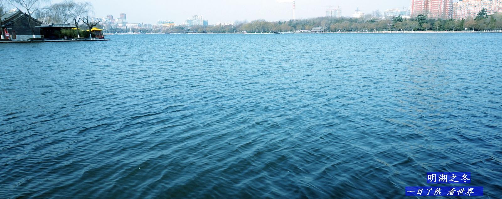 明湖之冬-14-1600.jpg