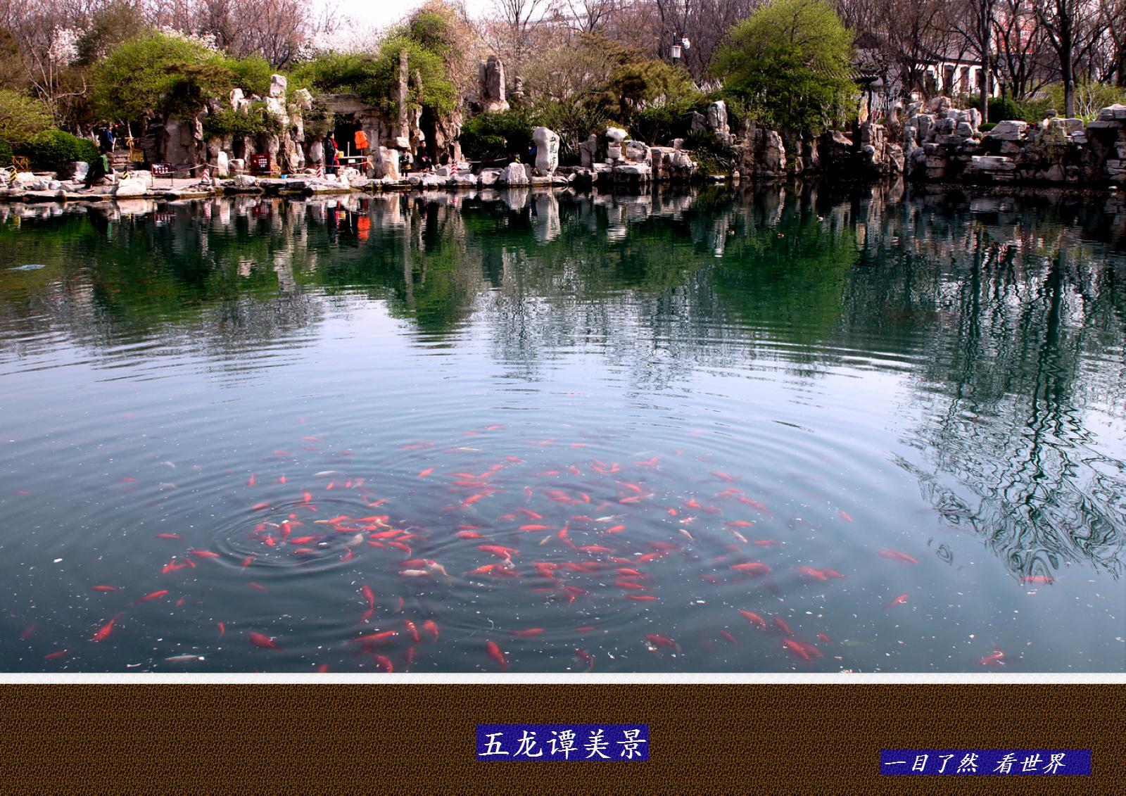 五龙谭美景-4-1600.jpg