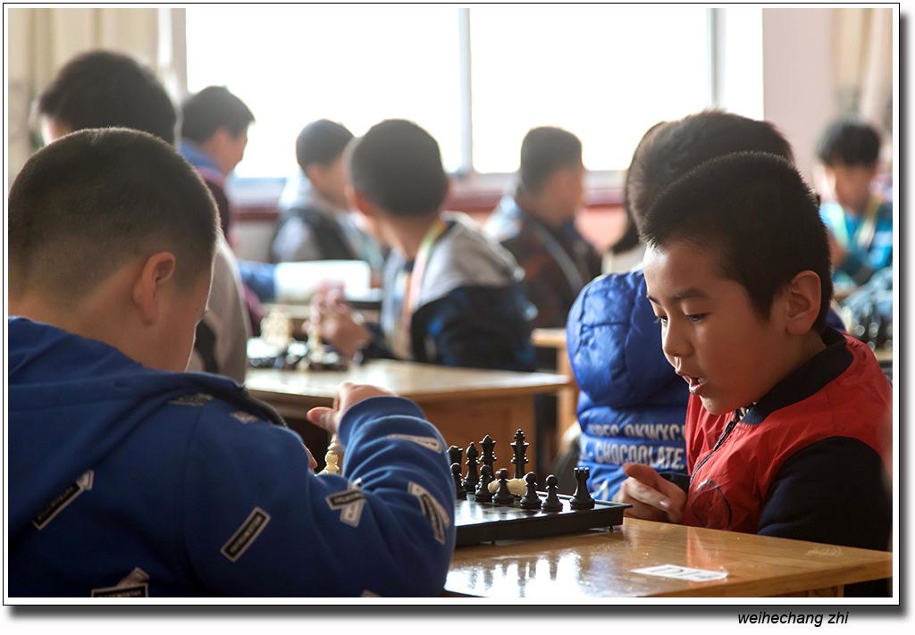 安丘国际象棋23.jpg