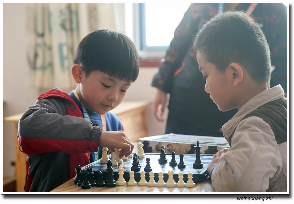 安丘国际象棋24.jpg