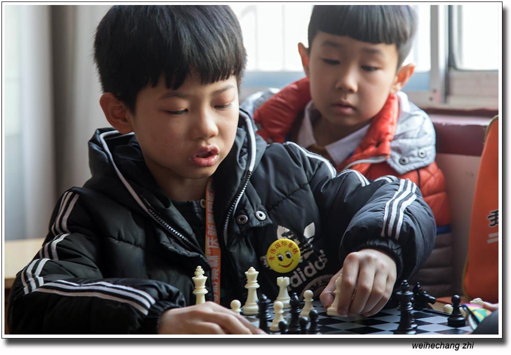 安丘国际象棋25.jpg