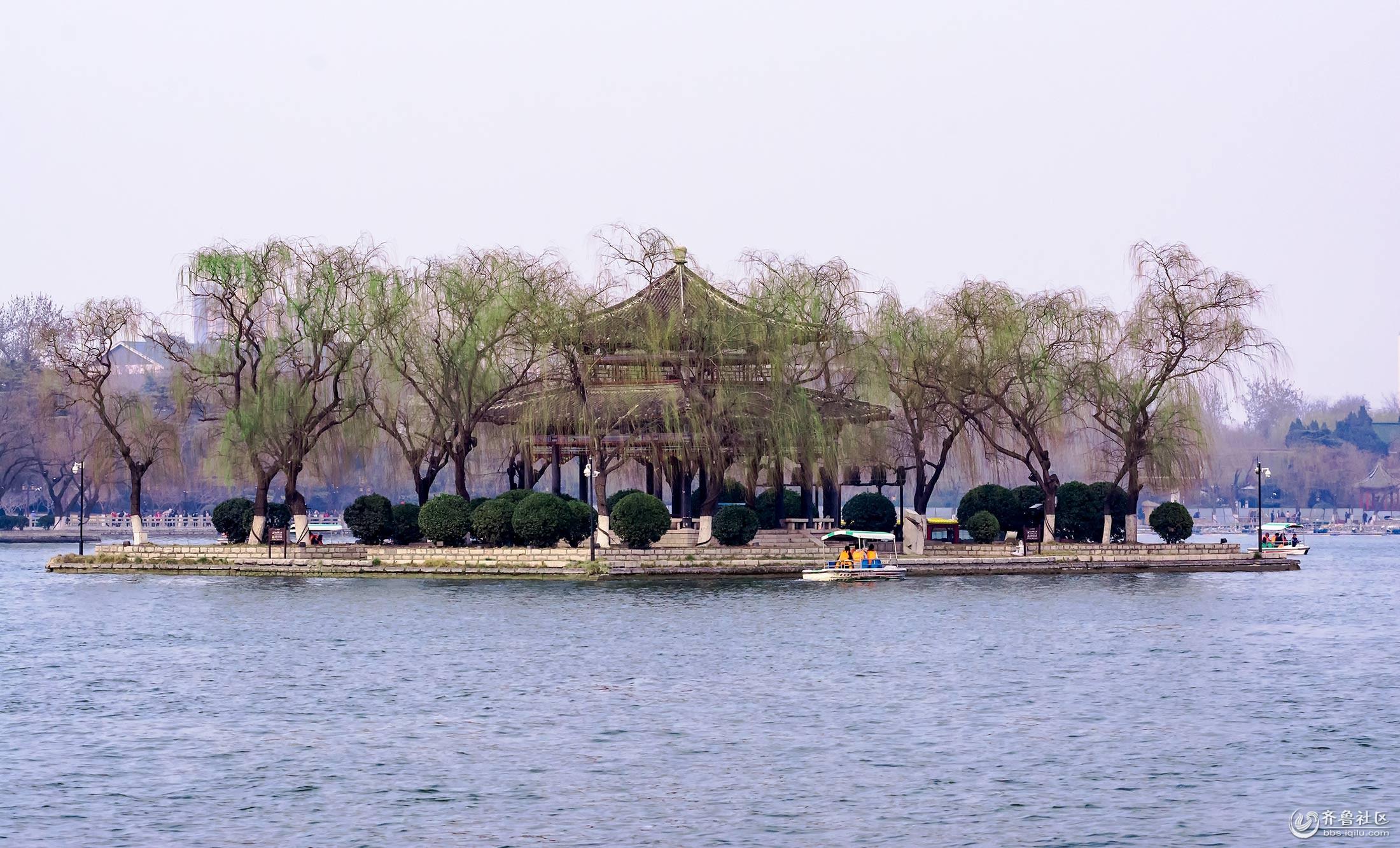 春到明湖.jpg