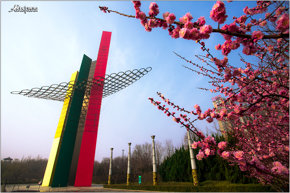 【数码组图】春雨洗礼后的安顺公园