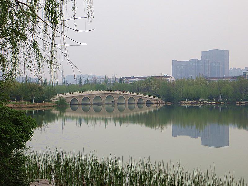 淄博植物园风景