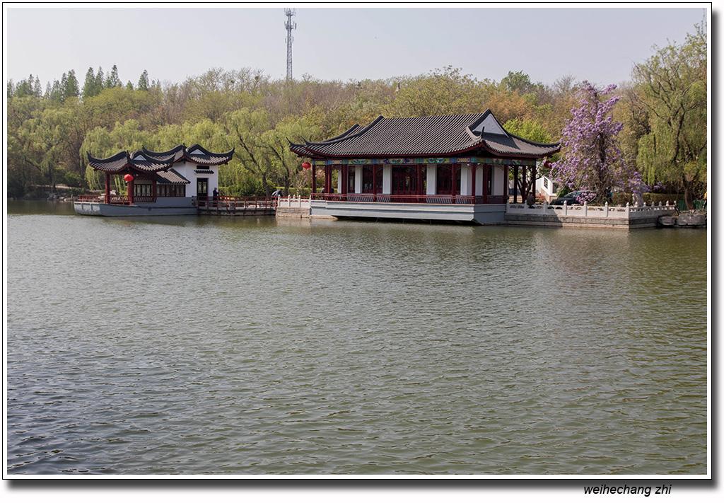 青云山开放20周年吉庆有余12.jpg