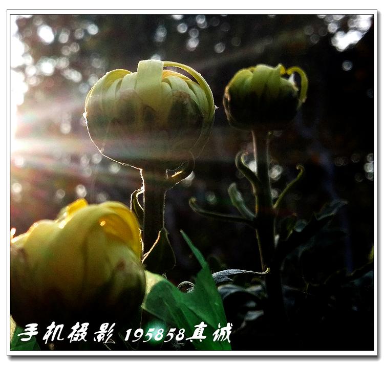 20171020_150824.jpg