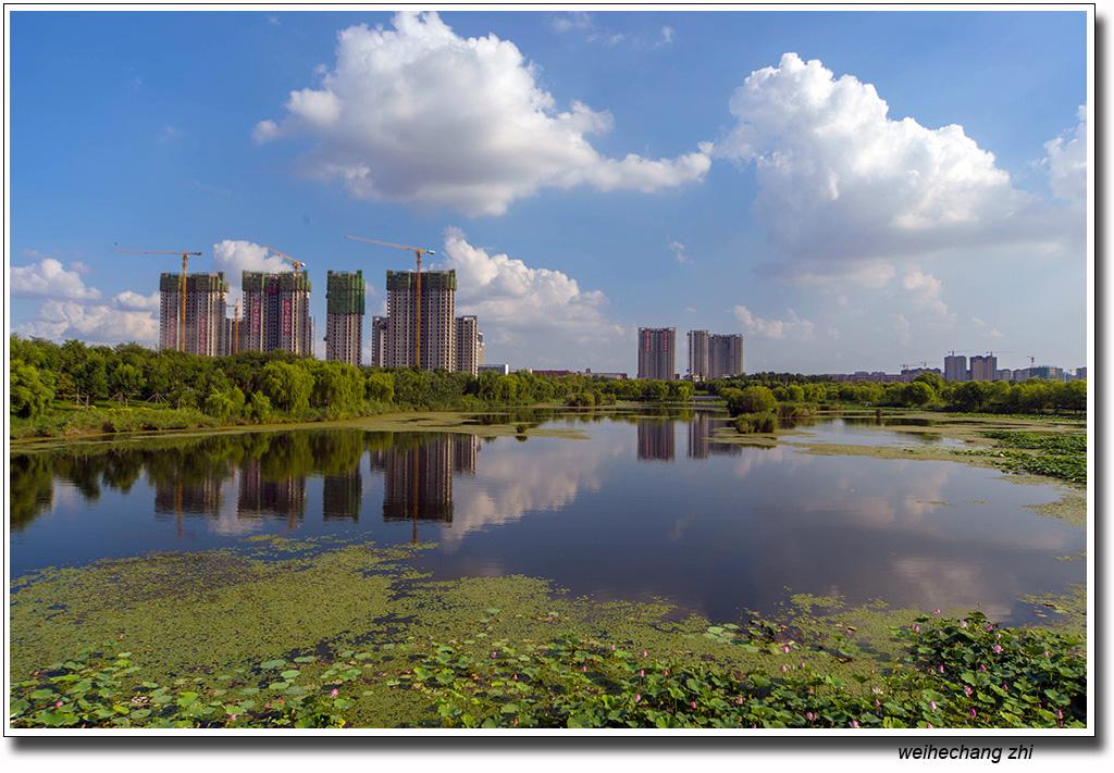 安丘的蓝天白云5.jpg