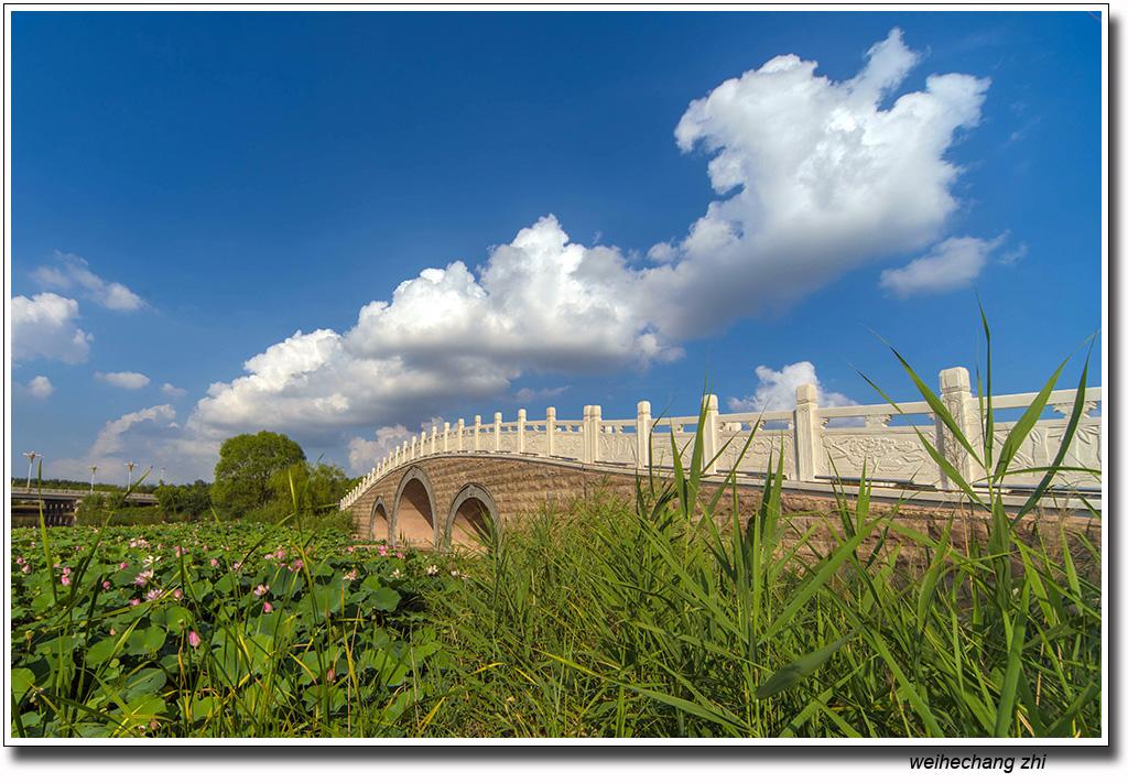 安丘的蓝天白云6.jpg