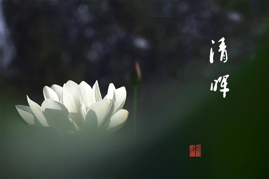 DSC_5516.jpg调1.jpg
