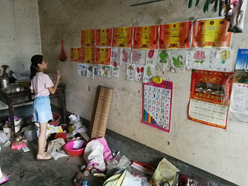 成绩优异,每次重要考试都能考进班内前十名的杨金文得了满墙的奖状