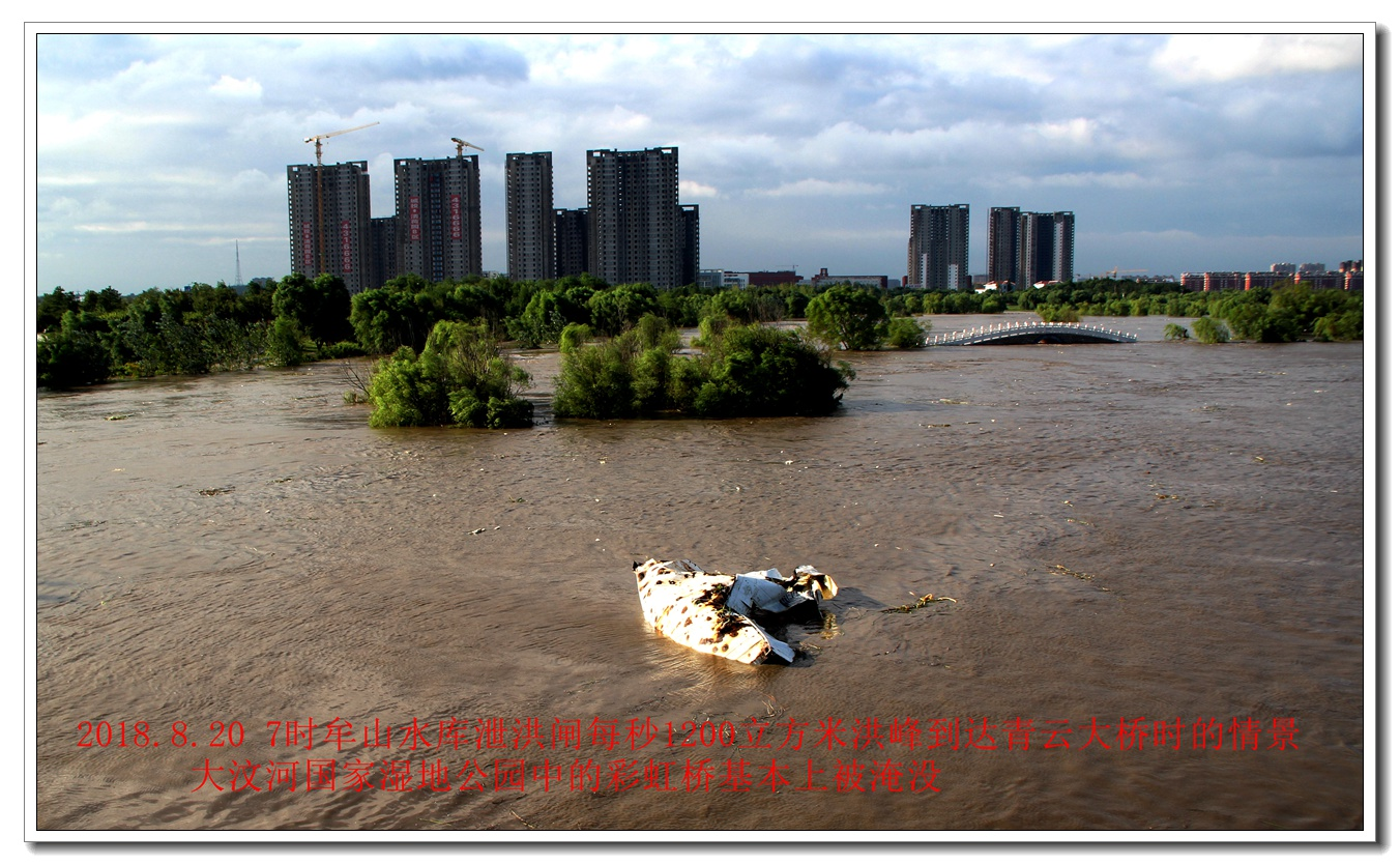温比亚台风过后湿地洪峰