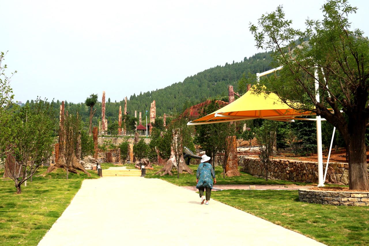 硅化木公园(5).jpg