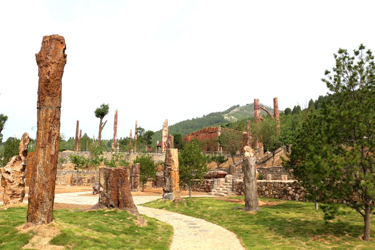 硅化木公园(6).jpg