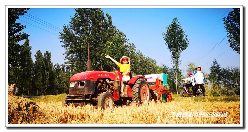 麦 收 季——天桥区大桥镇敬家村麦收(手机摄影)5