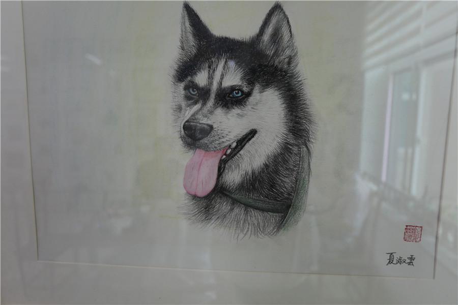 安丘市夏淑云老师的铅笔画作品
