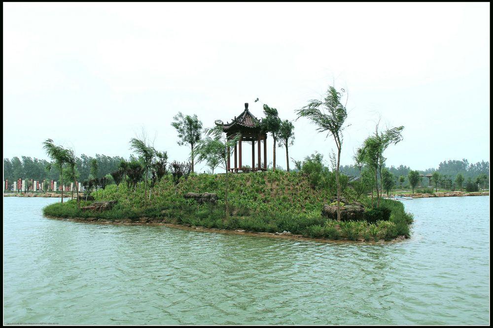 夏津黄河故道森林公园椹果园 温泉度假村