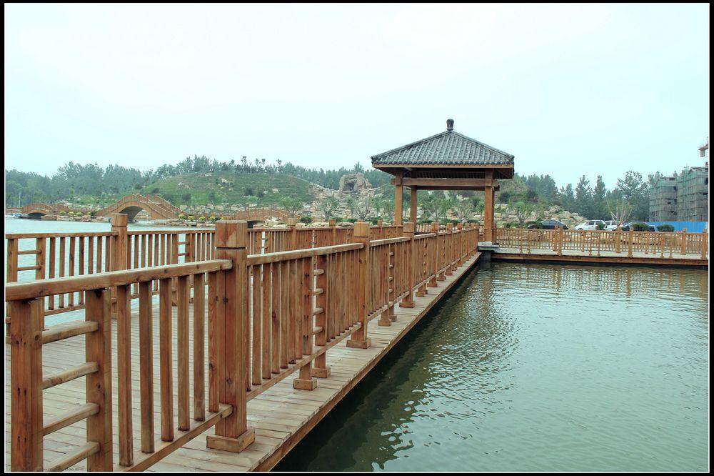 夏津黄河故道森林公园椹果园,温泉度假村