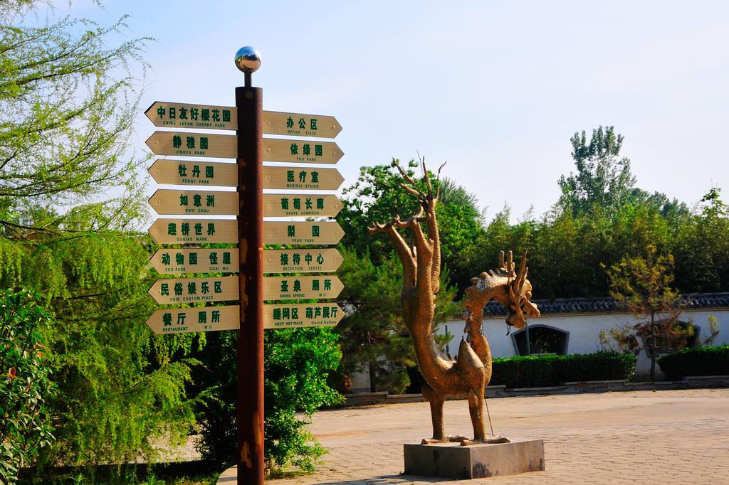 聊城江堤公园图片分享;