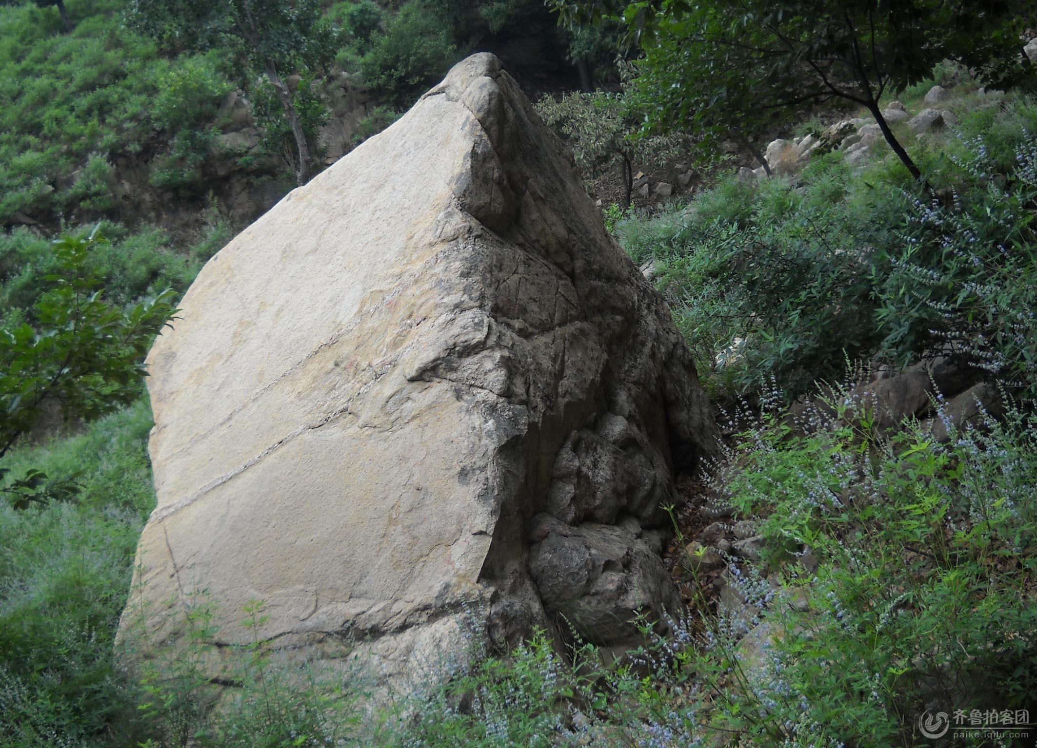 隐云山的奇石怪树