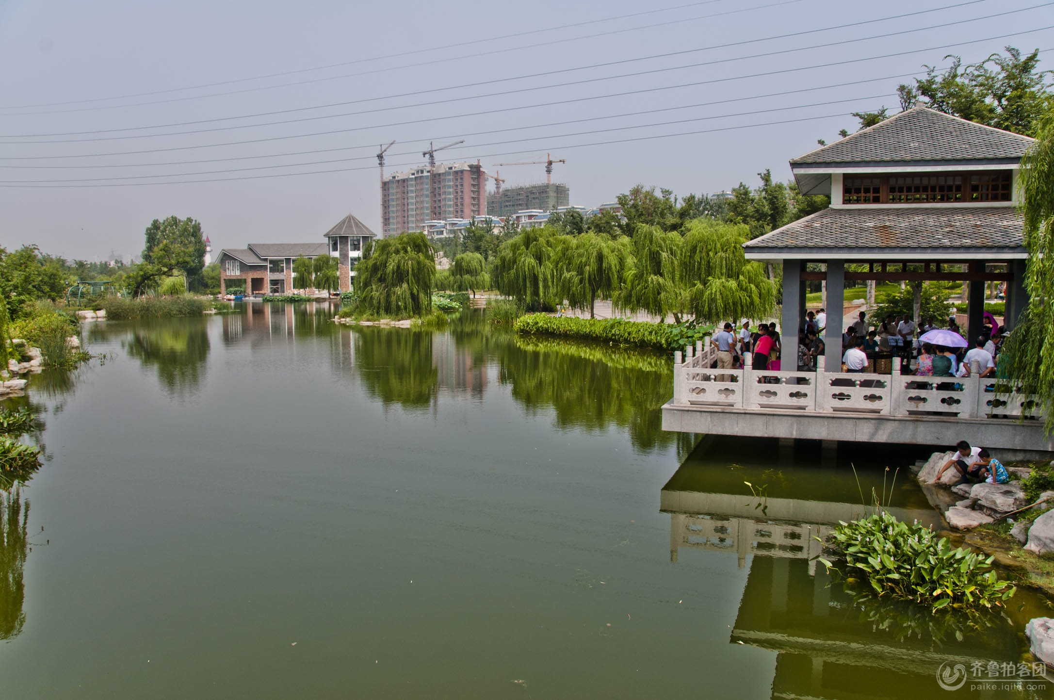 潍坊 清晨 植物园