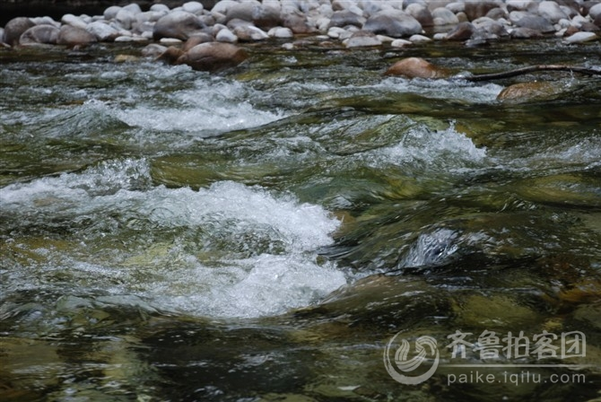玉龙电视台_玉龙纳西族自治县电视台征集台标