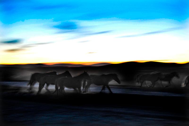 黎明之夜2.jpg