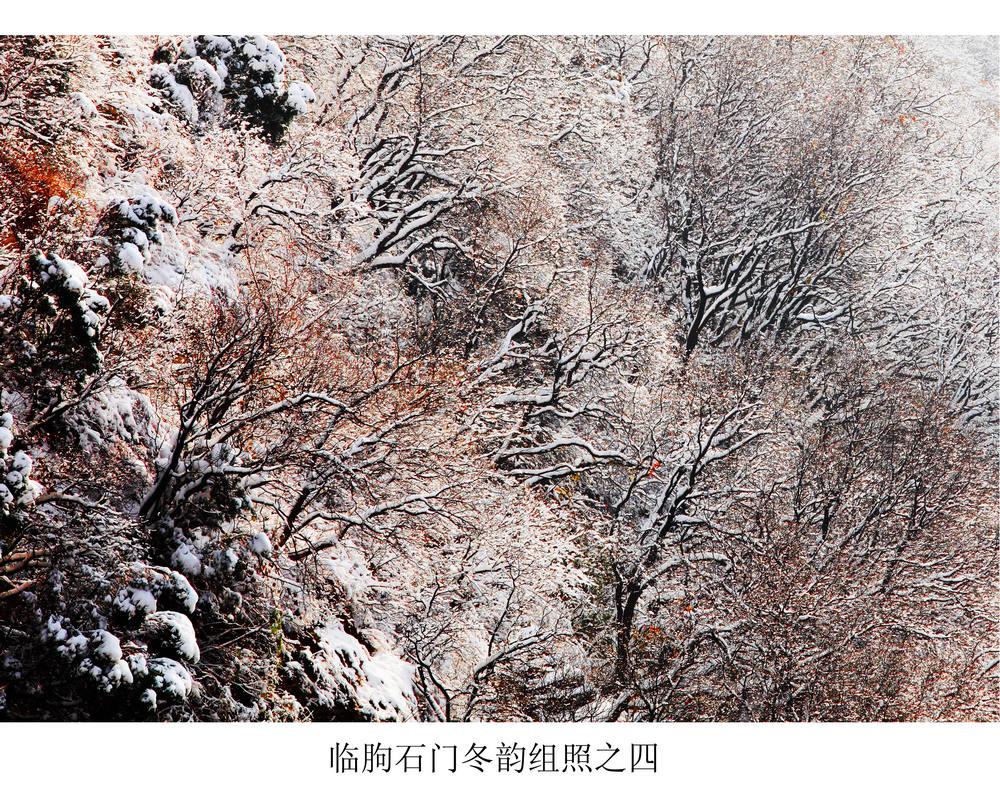 nEO_IMG_临朐石门冬韵组照之四.jpg
