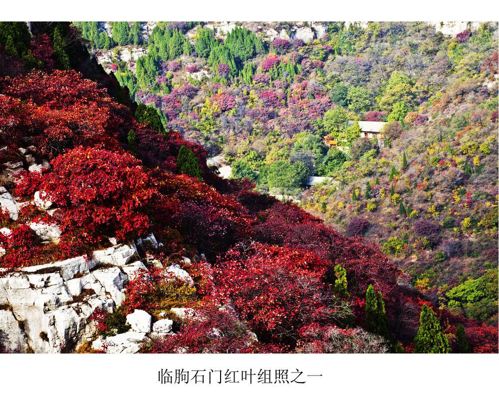 nEO_IMG_临朐石门红叶组照之一 .jpg