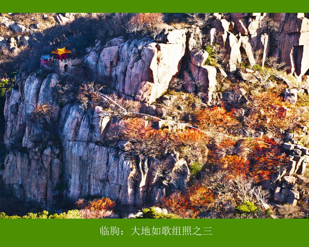 nEO_IMG_临朐:大地如歌组照之三.jpg