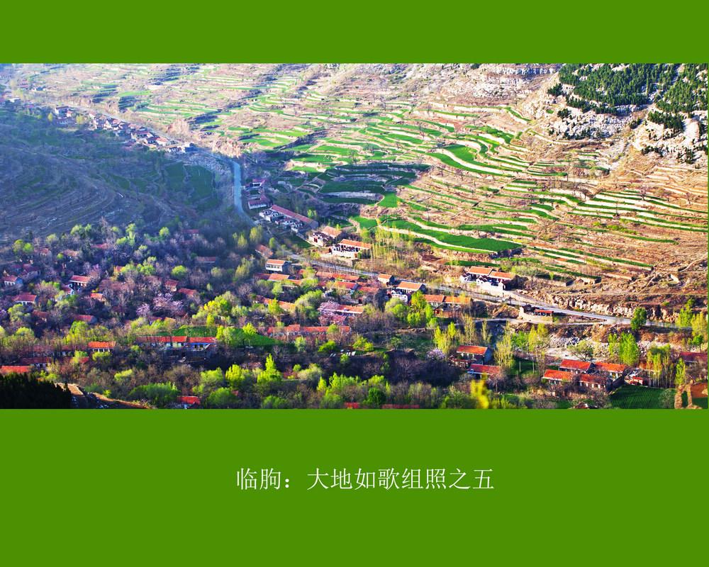 nEO_IMG_临朐:大地如歌组照之五.jpg