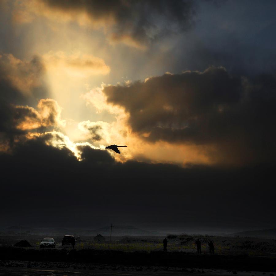 《天鹅湖的夕阳》.jpg