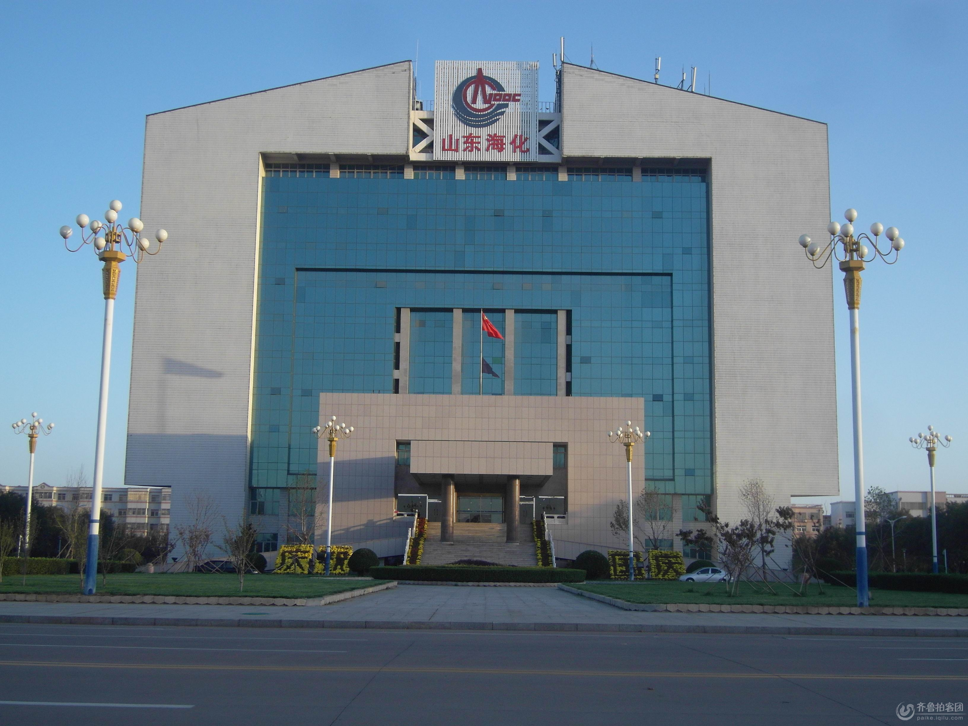 现为中国海洋石油总公司旗下的中海石油炼化有限责任公司的全资子公司