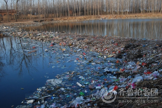 人类破坏海洋生态_中国 环境 破坏_生态环境破坏和污染不仅