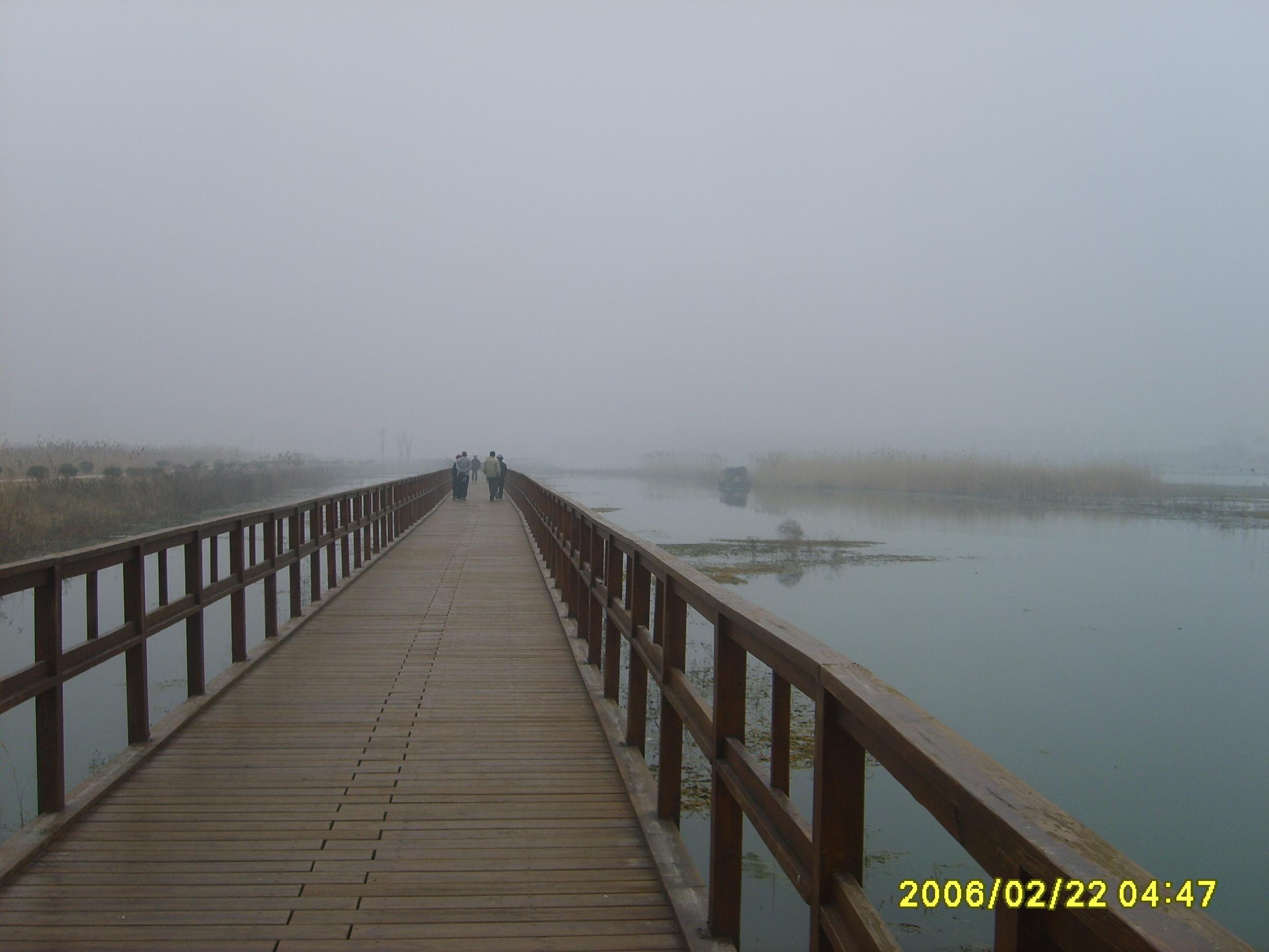 长长的栈桥,远处的背影