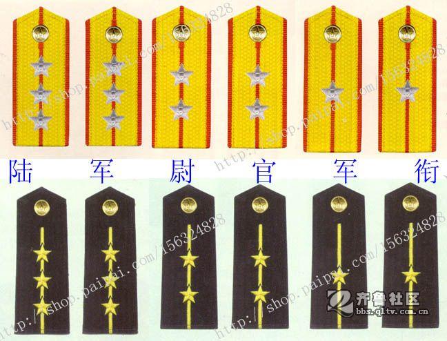 中国人民 解放军军衔等级 与肩章标志 中国人民 解放军 _ 等级 制度 【
