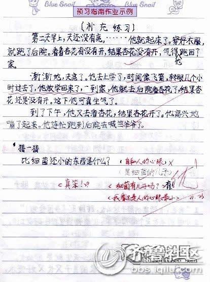 看小学语文老师批改的作业