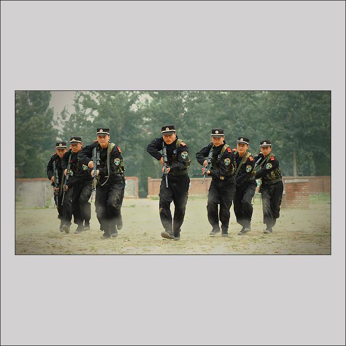 中国武警警犬训练基地 武警警犬基地黑豹 武警广州警犬基地