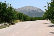 石榴园绿道