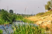 枣庄喜德盛骑迹单车俱乐部骑行蟠龙河湿地