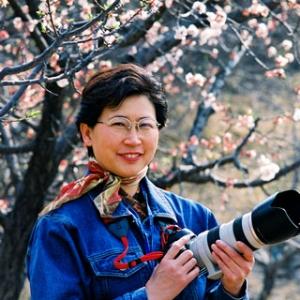山东省摄影家协会第六届主席团常务副主席田凤仙