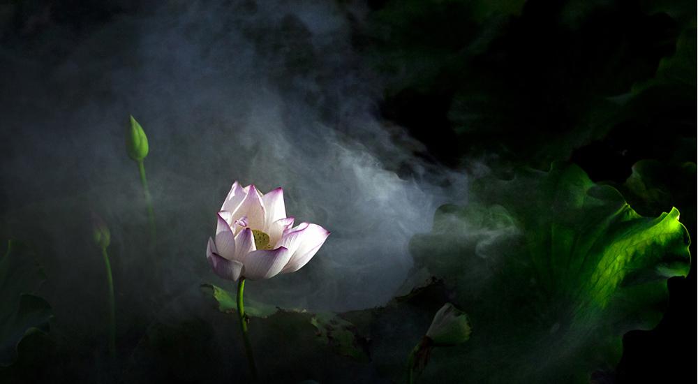 张志国摄影作品展